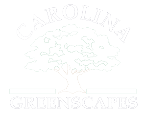 Carolina Greenscapes logo-white-300